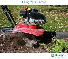 This is a guide about tilling your garden. Tilling the soil is an important step in readying your garden plot.