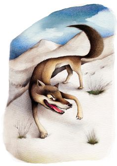 "Ester Garcia Cortes ILLUSTRATION   ""Wolf Fables"""
