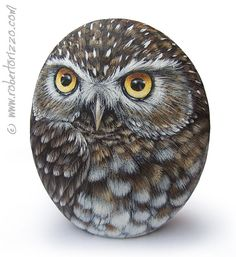 Original Hand Painted Little Owl Rock от RobertoRizzoArt на Etsy