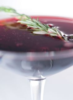 Lambrusco Rosemary Gin Fizz via Caroline on Crack