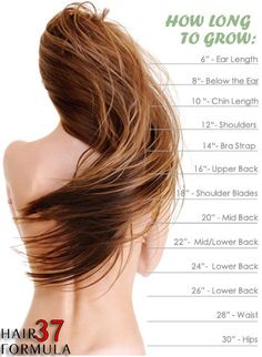 free hair growth calculator tool just click on the chart and start growing your hair today faster!!!!