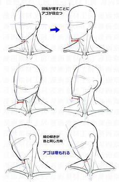 Anatomy Drawing Tutorial You Can Enjoy drawing tips With These Tips Drawing Heads, Body Drawing, Anatomy Drawing, Drawing Base, Face Anatomy, Male Face Drawing, Anatomy Art, Anime Face Drawing, Neck Drawing