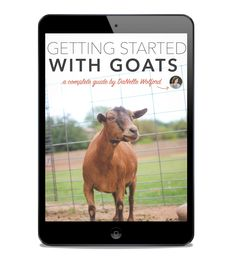 Looking to raise some goats? Here's a SHORT guide to selecting, nurturing, raising, and especially milking goats.