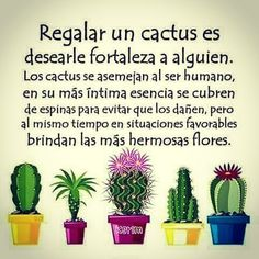 Image may contain: plant Love Quotes For Her, True Love Quotes, Inspirational Quotes About Love, Cactus Quotes, Summer Quotes, Albert Einstein Quotes, Diy Weihnachten, Freundlich, Cactus Plants