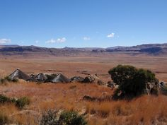Lexi S. - Bloemfontein, South Africa