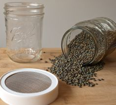 Sprouted puy lentils by tastyshoestring.com