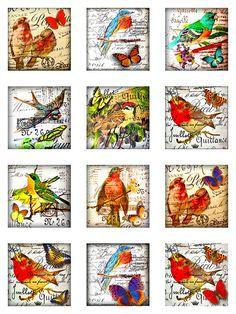 Butterflies Birds Vintage French Script Canvas por pixeltwister
