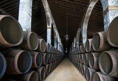 Jerez de la Frontera - bodega - Andalousie (Espagne)