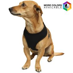 OxGord Pet Harness - $7.88. https://www.tanga.com/deals/f0d012e9628e/oxgord-pet-harness