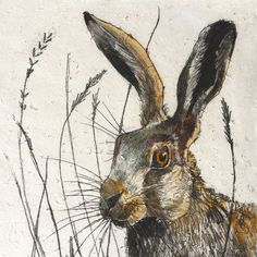 Wildlife Hare mini print - Irish Crafts - Crafts Made In West Cork