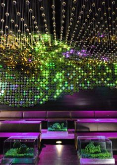 ♂ Modern commercial space interior with green living wall sustainable design LEED Certified Greenhouse Nightclub - NY