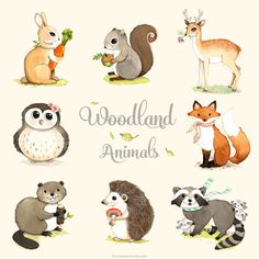 Woodland animals print set