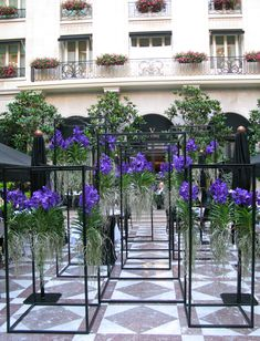 Jeff Leatham in the Marble Courtyard at the Four Seasons Hotel George V