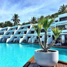 Nothing nicer than a midweek jetaway to @oohaymanisland #gonow #myitlist #oohaymanisland #greatbarrierreef #queensland #iconic #swimming #pool #luxurytraveladvisor #wheresbrentbeen #virtuosotravel #smartflyer #smartflyerAU #beautifulhotels #beautifuldestinations #menwithexplore  by wheresbrentbeen http://ift.tt/1UokkV2