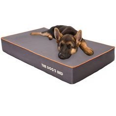 """extra large 7"""" thick orthopedic memory foam dog bed with 3"""