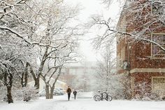 students walking around during a snow storm at Umass-Amherst by Mountain320, via Flickr