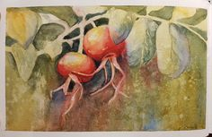 """Rose hips""  Watercolour sketch, negative painting."