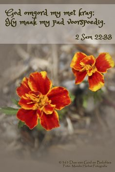Dag 152 2 Sam Byvelvers God omgord my met krag; Hy maak my pad voorspoedig. Scripture Verses, Bible Scriptures, Inspirational Qoutes, Heres To You, Prayer Board, Afrikaans, Jesus Christ, Prayers, Encouragement