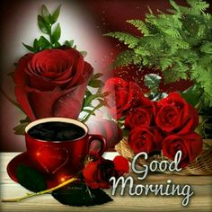 Good Morning Cute Good Morning Gif, Good Morning Roses, Good Morning Coffee, Good Morning Picture, Good Morning Greetings, Beautiful Morning, Good Morning Images, Sunday Morning, Red Rose Pictures