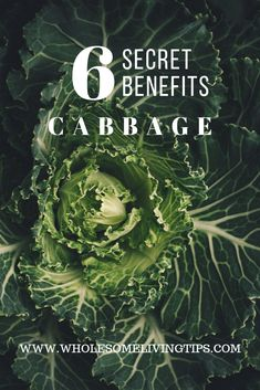 6 Secret Health Benefits Of Cabbage - Wholesome Living Tips Detox Recipes, Healthy Recipes, Cabbage Health Benefits, Unsung Hero, Blood Pressure, Low Carb, Healthy Eating, Gluten, Keto