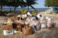 Barbados Tourism Pro