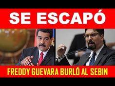 ¡SE ESCAPÓ! Freddy Guevara burló al SEBIN. Le dejó el pelero a Maduro