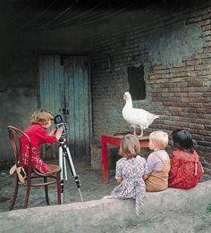 cute photograph lesson