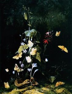 Plants, Frogs, Butterflies and a Snake on a Forest Ground - Otto Marseus van Schrieck