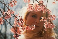 Yigal Ozeri | Triads