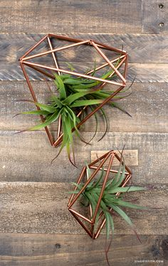 Copper_Geode_Plant_Holders