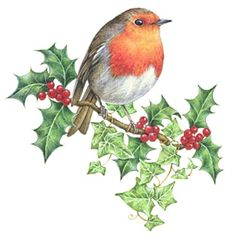Leading Illustration & Publishing Agency based in London, New York & Marbella. Christmas Bird, Christmas Drawing, Christmas Scenes, Christmas Paintings, Christmas Animals, Vintage Christmas Images, Christmas Pictures, Decoupage, Bird Drawings