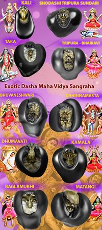 Kali Goddess, Mother Goddess, Goddess Art, Radha Krishna Images, Radha Krishna Love, Durga Maa, Shiva Shakti, Sanskrit Mantra, Lord Vishnu