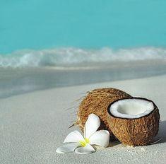 Luxuriate on a crystalline beach to admire a lush tropical floral and enjoy a rich summery treat. Summer Vibe, Summer Of Love, Paradis Tropical, Foto Top, Am Meer, Hawaiian Islands, Hawaiian Luau, Island Girl, Ocean Beach