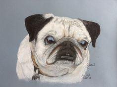 In opdracht tekening van een overleden hondje. Pastelpotlood