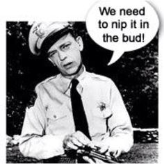 """Perhaps the best character actor on TV ~ Don Knotts as Barney Fife on """"The Andy Griffith Show. Barney Fife, Don Knotts, The Andy Griffith Show, Watch Tv Shows, Old Shows, Tv Land, Old Tv, Classic Tv, Favorite Tv Shows"""