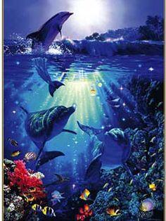 Dolphin_in_the_Sun_Christian_Riese_Lassen