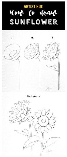 Easy Flower Drawings, Flower Art Drawing, Flower Drawing Tutorials, Sunflower Drawing, Cute Easy Drawings, Flower Sketches, Art Drawings Sketches Simple, Pencil Art Drawings, Drawing Ideas