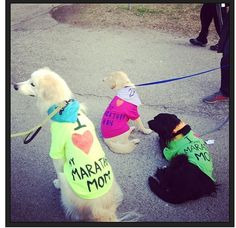 Doggie marathon support tshirts for me and the gals @Ginna Miller @Allison j.d.m Parker