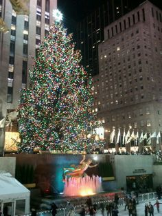 Christmas Tree at Rockefellar Center, I cant wait to see this in person next year!!