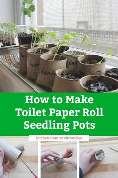 """How to Make Toilet Paper Roll Seedling Pots - - We all have spare toilet paper rolls. Transform this """"trash"""" into toilet paper roll seedling pots and learn how to start seeds on your window sill. Spring Activities, Activities For Kids, Nature Activities, Paper Pot, Paper Towel Rolls, Toilet Paper Roll Crafts, Growing Seeds, Planting Seeds, Seed Planting For Kids"""
