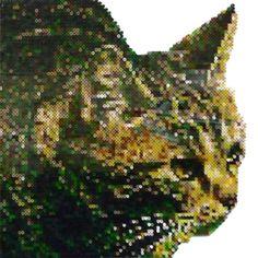 8 Best Perler Bead Nyan Cat Images Nyan Cat Perler Beads
