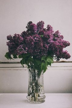 Purple Flowers XO