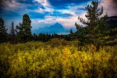 Grand Tetons Through Smoke and Rain - Teton Art Print Wyoming Picture Mountain Rustic Home Decor Photography Wall Artwork. Title: Smoke Screen. The Grand Tetons appear through smoke and rain in this shot from Grand Teton National Park. This listing is for a professional quality print on archival photo paper that will be resistant to fading for 100 years. The print also comes with a card that provides details about the image (Title, location & story behind it) that makes it perfect for...