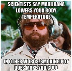"""""""Scientists say marijuana lowers your body temperature, in other words smoking pot does make you cool."""""""