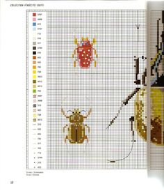 Gallery.ru / Фото #14 - MARABOUT Insects - tatasha