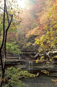 No matter what time of year, Clifty Falls State Park is the perfect place for an afternoon adventure OR a weekend getaway.