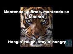 Survivor - Eye of tiger ( Olho do Tigre) legendado Português/ inglês Damor #17 - YouTube Canal E, Panther, Eyes, Party Cakes, Youtube, Lyrics, Animals, Shower Cakes, Animales