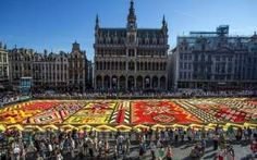 The Brussel's Floral Carpet Contains More Than 700,000 Individual Hand-Packed Flowers