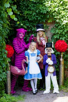 Alice in Wonderland character costumes-many more including Queen of Hearts and Tweedle Dee and Tweedle Dum!