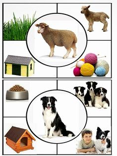 Video of farm animals photos with the sounds they make Preschool Learning Activities, Animal Activities, Animal Crafts, Toddler Activities, Preschool Activities, Kids Learning, Farm Animals Preschool, Montessori Toddler, Montessori Materials